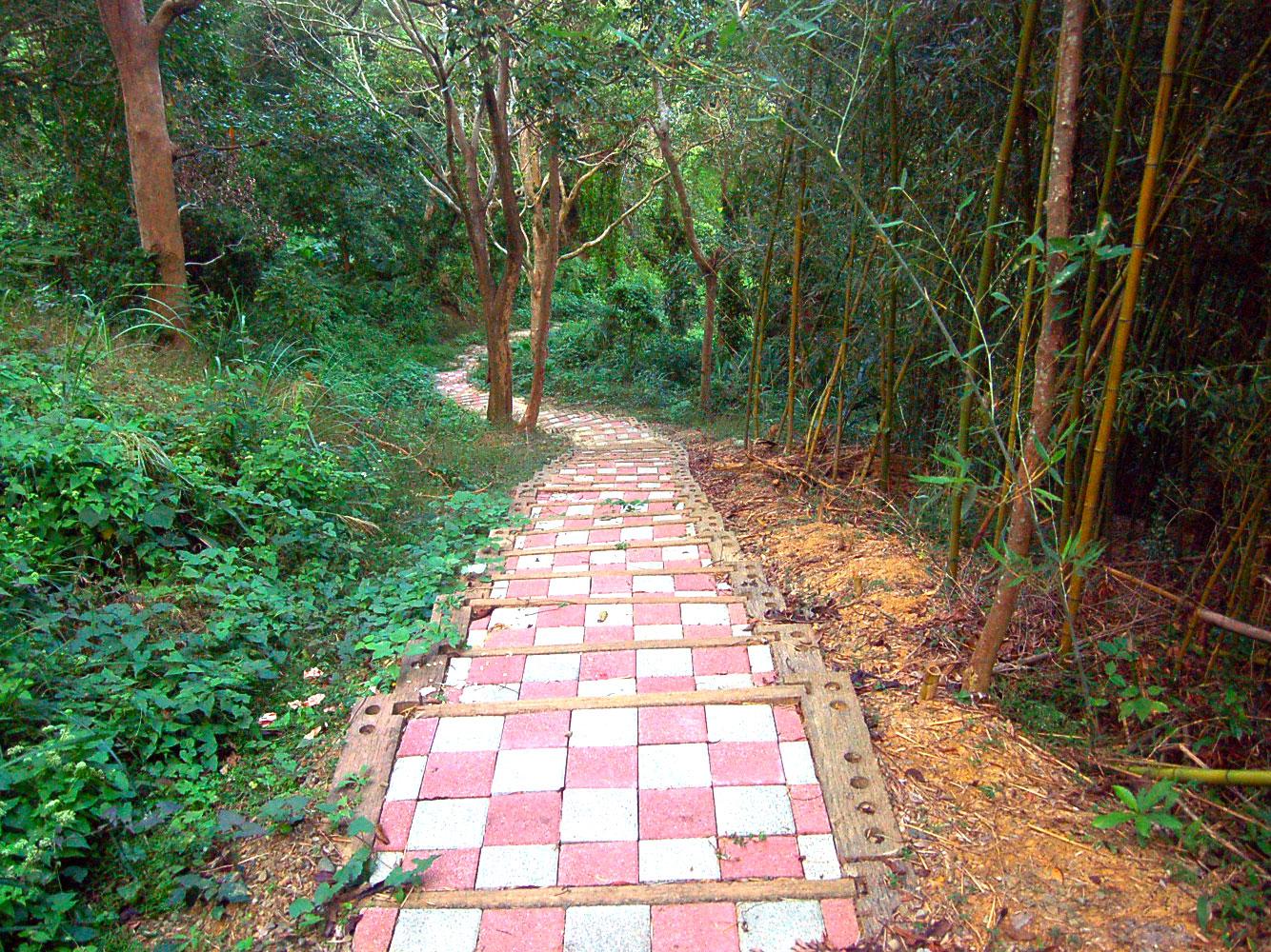 龍崀頂步道